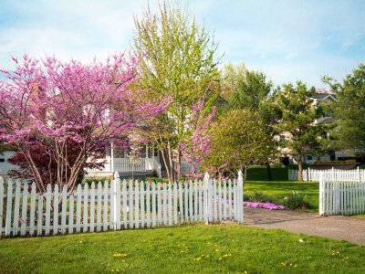 home - fencing